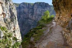 Vikos gorge Stock Image
