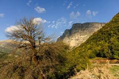 Vikos gorge Stock Photo