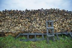 Vikt osannolik trä och trappa i byn Royaltyfri Bild