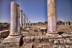 Viktigt historiskt fördärvar av salamier, nordliga Cypern royaltyfria foton
