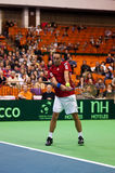Viktor Troicki Royalty Free Stock Images