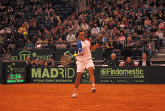 Viktor Troicki-4 Royalty Free Stock Photo