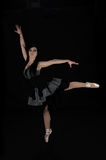 Viktorianische Ballerina Lizenzfreies Stockbild