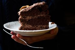 Viktorianische Kuchenscheibe der Schokolade auf einer weißen Platte mit dunkler schwermütiger Fotografie der Walnüsse Stockfotos
