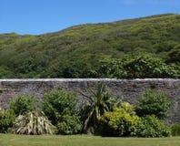 Viktoriansk walled trädgård, Irland Arkivbilder