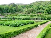 Viktoriansk Walled trädgård på den Kylemore abbotskloster Royaltyfri Bild