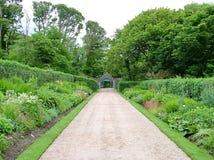 Viktoriansk Walled trädgård på den Kylemore abbotskloster Royaltyfria Bilder