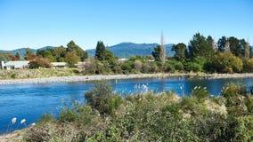 Vila ao longo dos bancos de um rio em Nova Zelândia Imagem de Stock Royalty Free