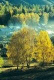 Vila Baihaba do outono, xinjiang, porcelana imagem de stock