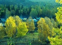 Vila Baihaba do outono, xinjiang, porcelana foto de stock