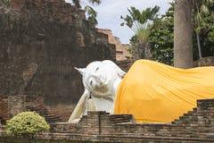 Vila Buddha av den Yai Chaimongkol templet på det Ayutthaya landskapet Arkivfoto