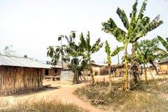 Vila com as plantas de banana em Tafi Atome na região de Volta dentro Imagem de Stock Royalty Free