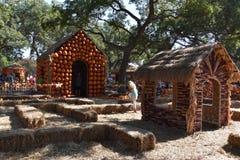Vila da abóbora em Dallas Arboretum e jardim botânico em Texas fotografia de stock royalty free
