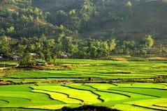 Vila da minoria étnica no campo do terraço Imagens de Stock