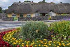 Vila de Adare - quintilha jocosa do condado - Irlanda Fotografia de Stock Royalty Free