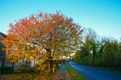 Vila de Blunsdon Fotografia de Stock
