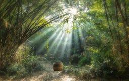 Vila de canto de bambu de Vietname Foto de Stock