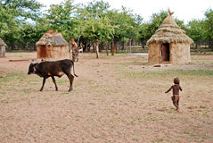 Vila de Himba com a cabana tradicional perto do parque nacional de Etosha em Namíbia Imagem de Stock Royalty Free
