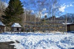 Vila de Inu, Hokkaido Fotografia de Stock Royalty Free