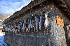 Vila de Inu, Hokkaido Imagem de Stock