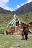 Vila de Jiuzhaigou em China Imagens de Stock Royalty Free