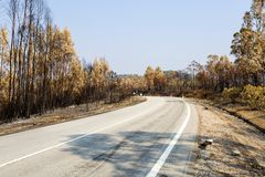 Vila de Rei Forest Fires fotografie stock