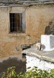 Vila de Senes imagens de stock