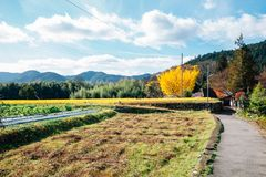 Vila do campo de Ohara em Kyoto, Japão foto de stock