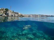 Vila do litoral da Espanha com fundo do mar e os peixes rochosos imagem de stock