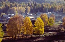 Vila do outono em xinjiang fotografia de stock