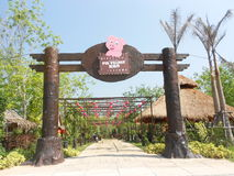 Vila do porco em Danok Tailândia foto de stock royalty free