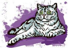 Vila för katt Fotografering för Bildbyråer