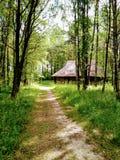 Vila, grama, floresta e céu imagens de stock royalty free