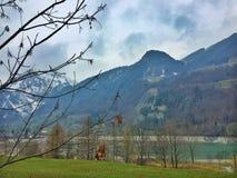 Vila idílico em Suíça Fotografia de Stock Royalty Free