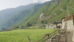 Vila nepalesa Prok Passeio na montanha do circuito de Manaslu vídeos de arquivo