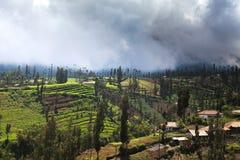 Vila no Caldera recolhido vulcões de Bromo Tengger da montagem, leste Fotografia de Stock Royalty Free