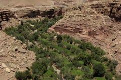Vila no deserto Imagem de Stock
