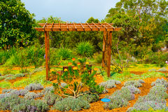 Vila område i en frodig trädgård Arkivfoto