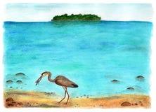 Vila på Maldiverna för flygillustration för näbb dekorativ bild dess paper stycksvalavattenfärg Royaltyfri Bild