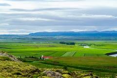 Vila pequena com os cavalos que pastam no campo verde Fotos de Stock