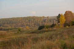 A vila, Sibéria Foto de Stock Royalty Free