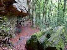 Vila stället på Heroldten på den Mullerthal slingan i Berdorf, Luxembourg Arkivbilder