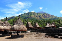 Vila tradicional Flores Indonésia de Gurusina Fotografia de Stock Royalty Free