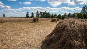 Vila tradicional no Polônia Fotografia de Stock