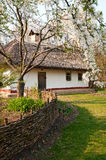 Vila ucraniana na primavera Imagens de Stock