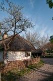 Vila ucraniana na primavera Foto de Stock