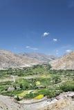 Vila verde dos oásis em montanhas do deserto Imagem de Stock