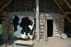 vilage σπιτιών στοκ φωτογραφίες με δικαίωμα ελεύθερης χρήσης