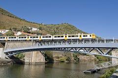 Vilage da região de Pinhão - de Douro Fotos de Stock