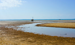 Vilanculos Beach, Mozambique. Panoramic View of Vilanculos Beach in Mozambique during low tide. One can see the various dhows resting in the sand Royalty Free Stock Image